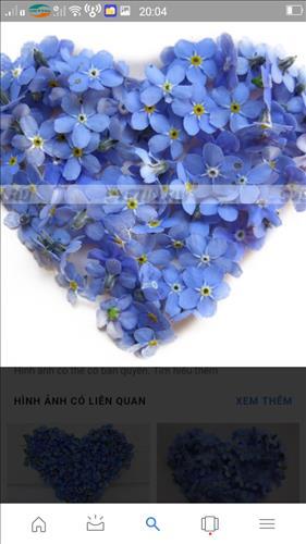 Huỳnh Ngoc oanh