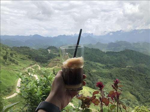 Ha Anh