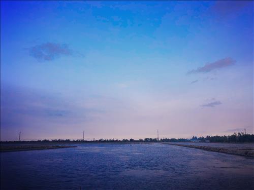 Nam Vinh